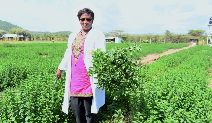 Celebrating Rural Women in Agriculture