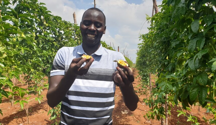 World Youth Skills Day: A Focus on Youth, Passionate about Passion Fruit Farming.
