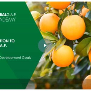 Training Agriculture Extension Officers on Global GAP